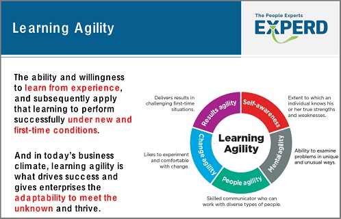 27 Okt 17_Learning Agility for Senior Leaders_4