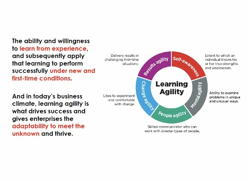 Ecosystem For Learning Agility